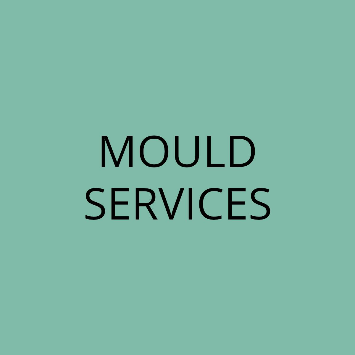 Mould Services
